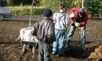 Noored istutasid puid_6
