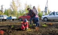 Noored istutasid puid_12